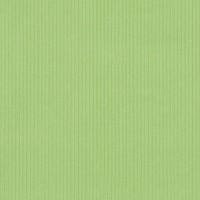 41 Appel Groen