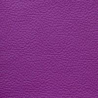 25 Purple